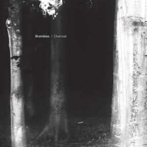 Brambles - Charcoal (Serein)