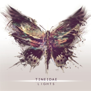 Tineidae - Lights