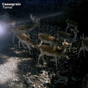 Cassegrain - Tiamat