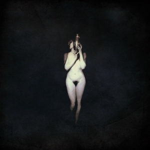 Black Swan - Tone Poetry