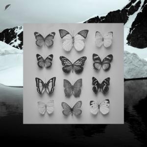 Christian Löffler - Young Alaska - Ki Records