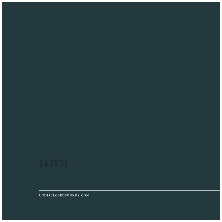 UNDISCLOSED - 24393E