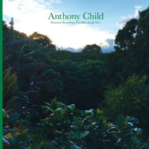 Anthony Child ‎– Electronic Recordings From Maui Jungle Vol 1