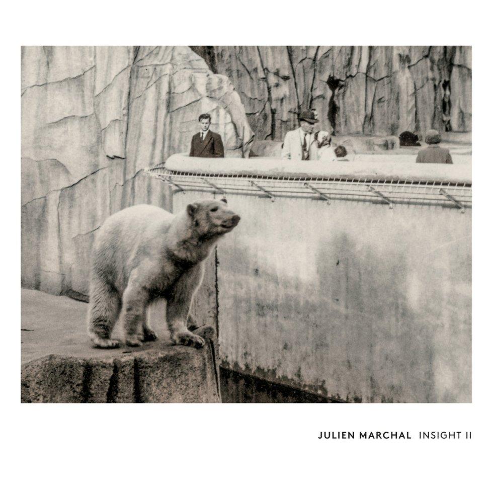 Julien Marchal - Insight II (1631 Recordings)