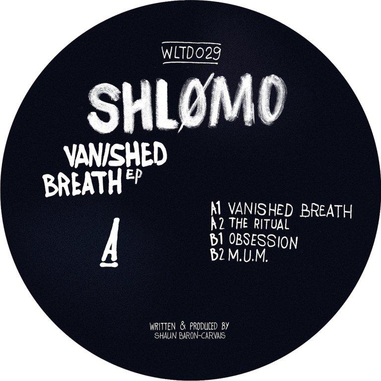 shlomo-vanished